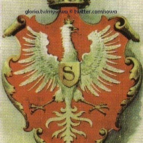 Adler sowa